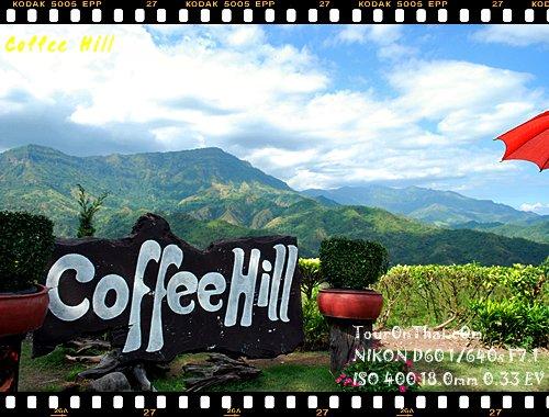 Coffee Hill คอฟฟี่ฮิล สวรรค์ร้านกาแฟ
