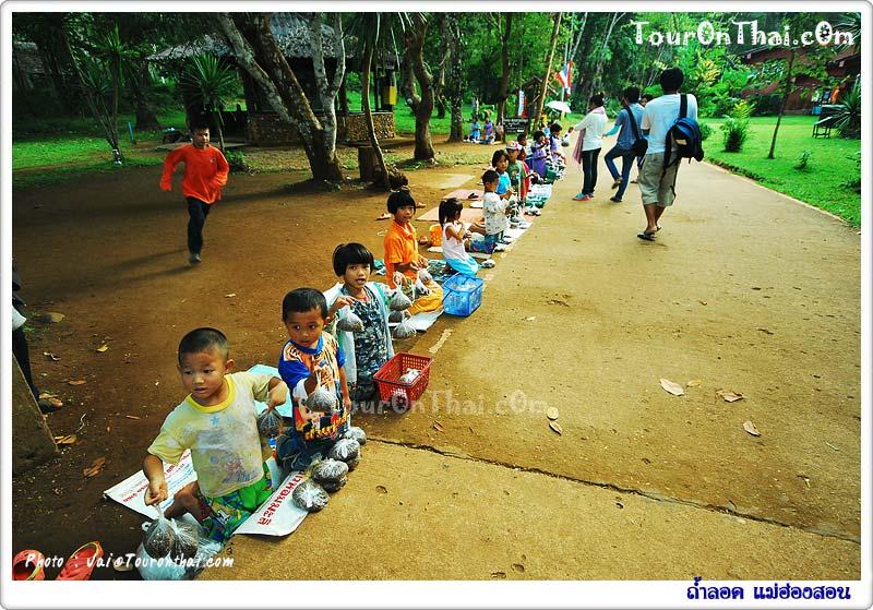 เด็กขายอาหารปลา