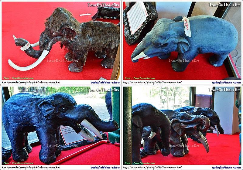 วิวัฒนาการช้างไทย