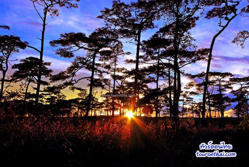พระอาทิตย์ตกบนภูสอยดาว