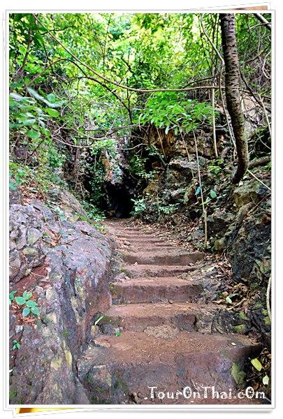 ทางเดินเข้าหุบป่าตาด