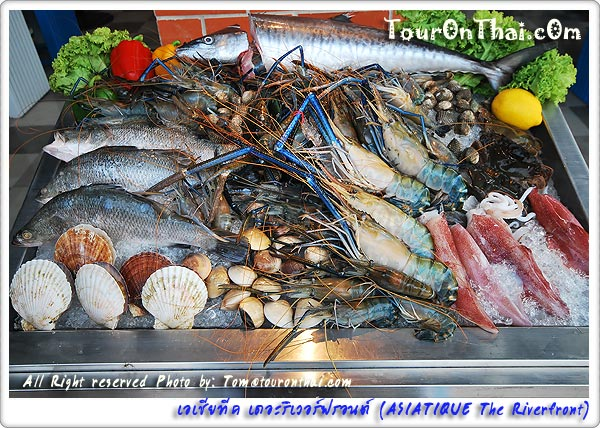 กุ้งหอยปูปลา