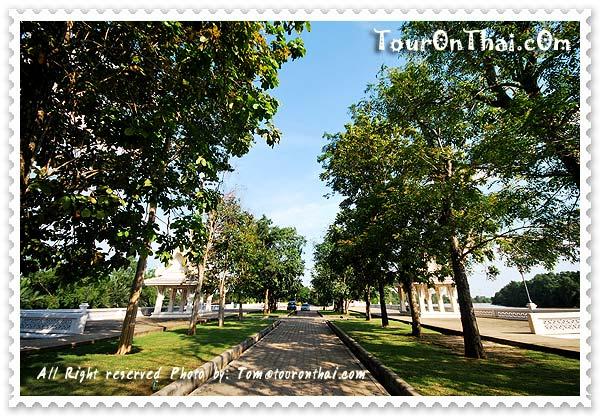 บรรยากาศร่มรื่นของต้นไม้ข้างศาลา