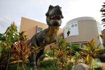พิพิธภัณฑสถานแห่งชาติธรณีวิทยาเฉลิมพระเกียรติ
