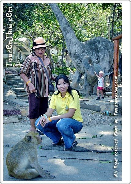 ถ่ายรูปกับลิง