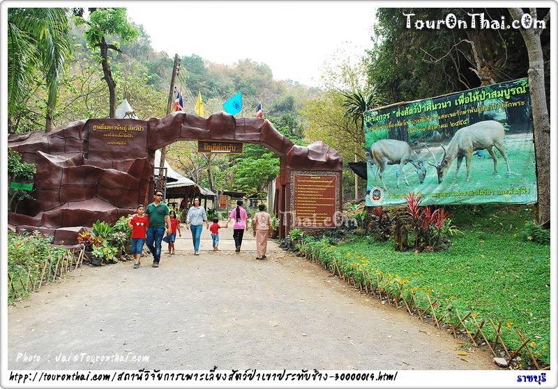 สวนสัตว์เปิด สถานีวิจัยการเพาะเลี้ยงสัตว์ป่าเขาประทับช้าง