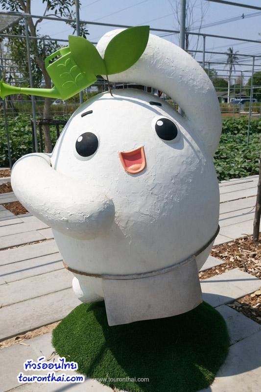 Coro Field โคโรฟิลด์ ที่เที่ยวใหม่สวนผึ้ง