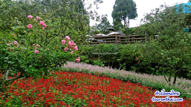 สวนหอม