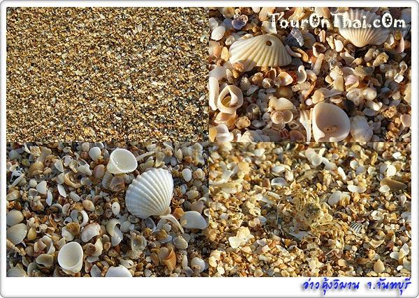 หาดทรายและเปลือกหอย