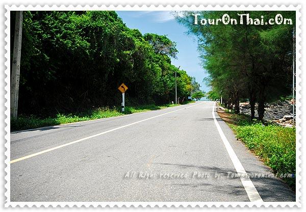ถนนสู่บ้านพัก