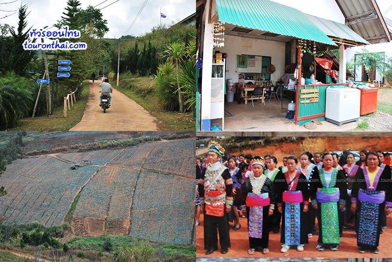 ท่องเที่ยวโดยชุมชนบ้านร่องกล้า