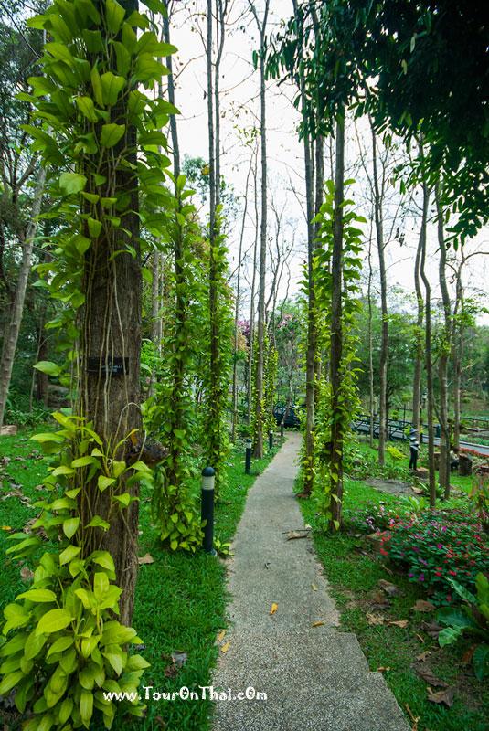 สวนหย่อมภายในพระตำหนักภูพานราขนิเวศน์