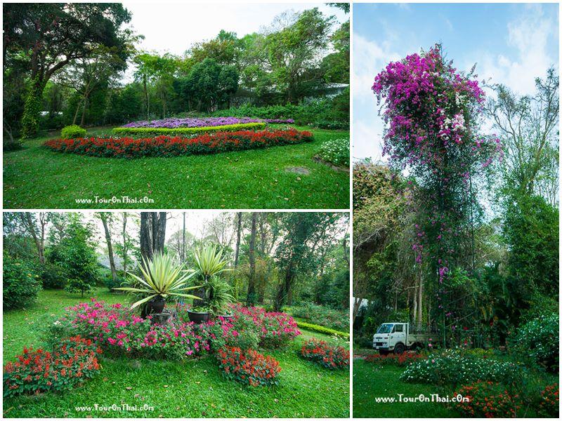 สวนหย่อมไม้ดอกพระตำหนักภูพานราขนิเวศน์