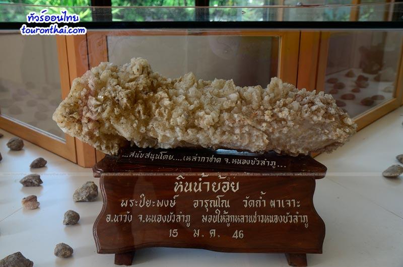 พิพิธภัณฑ์หอยหินโบราณ