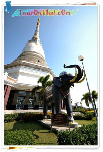 ช้างอัคนิพงศ์