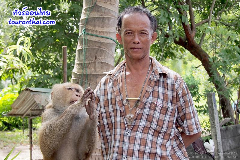 ศูนย์ฝึกสอนลิงเพื่อการเกษตร กระแดะแจะ