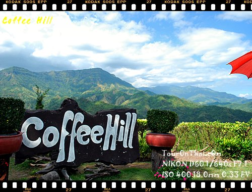 Coffee Hill